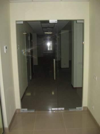 Двери из стекла 9